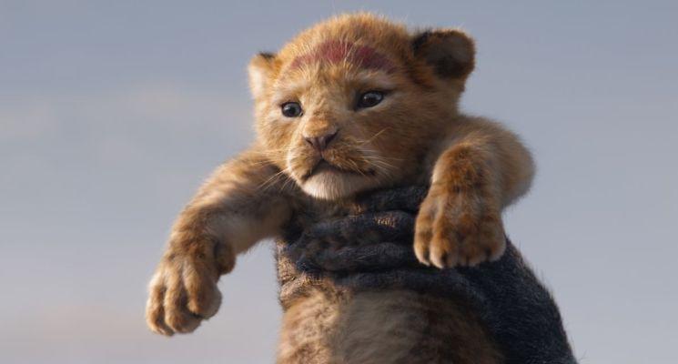 LionKing19